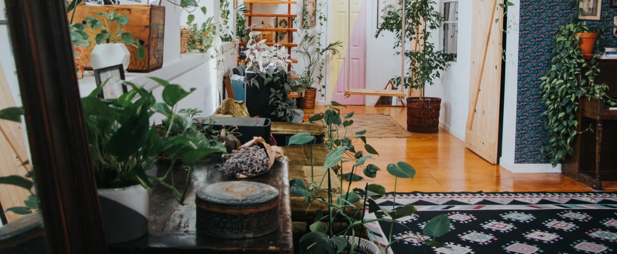 The Funky Loft Vintage Jungle Retreat in Bushwick in Brooklyn Hero Image in Bushwick, Brooklyn, NY