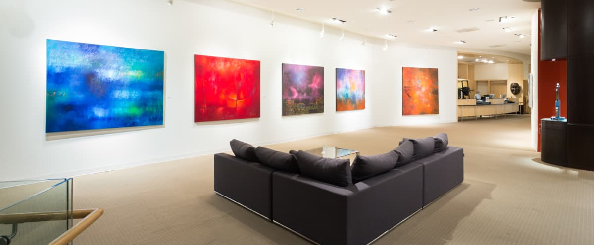 14,000 sq ft Downtown Art Gallery in Chicago Hero Image in Streeterville, Chicago, IL