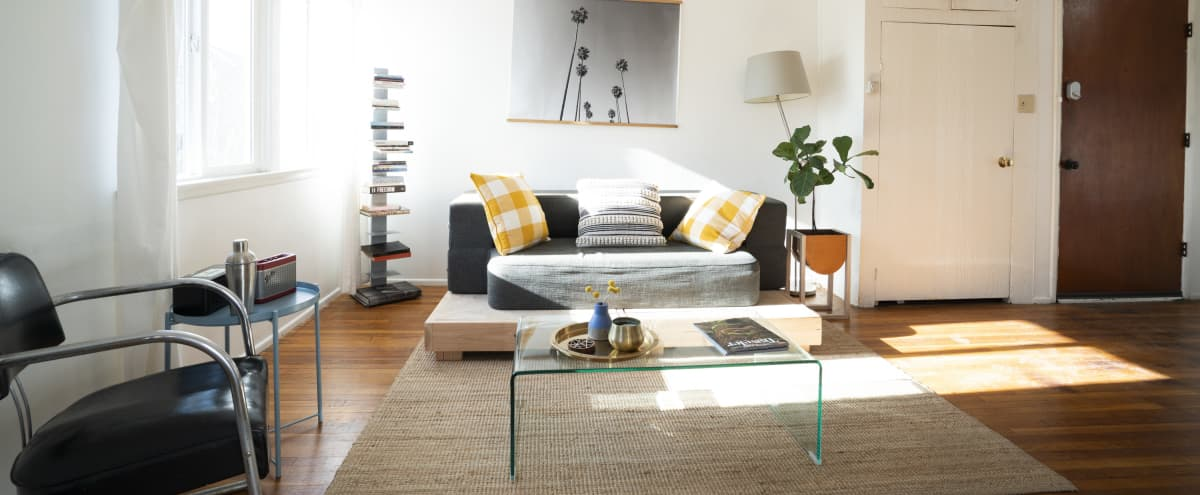 Hip, Bright & Spacious East side apartment with Patio in los angeles Hero Image in Eagle Rock, los angeles, CA
