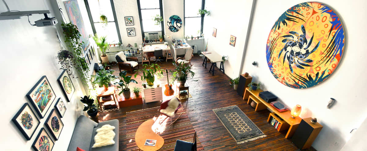 Huge, Bright Artist's Loft w/ Vibrant Art & Exotic Plants in Brooklyn Hero Image in Red Hook, Brooklyn, NY