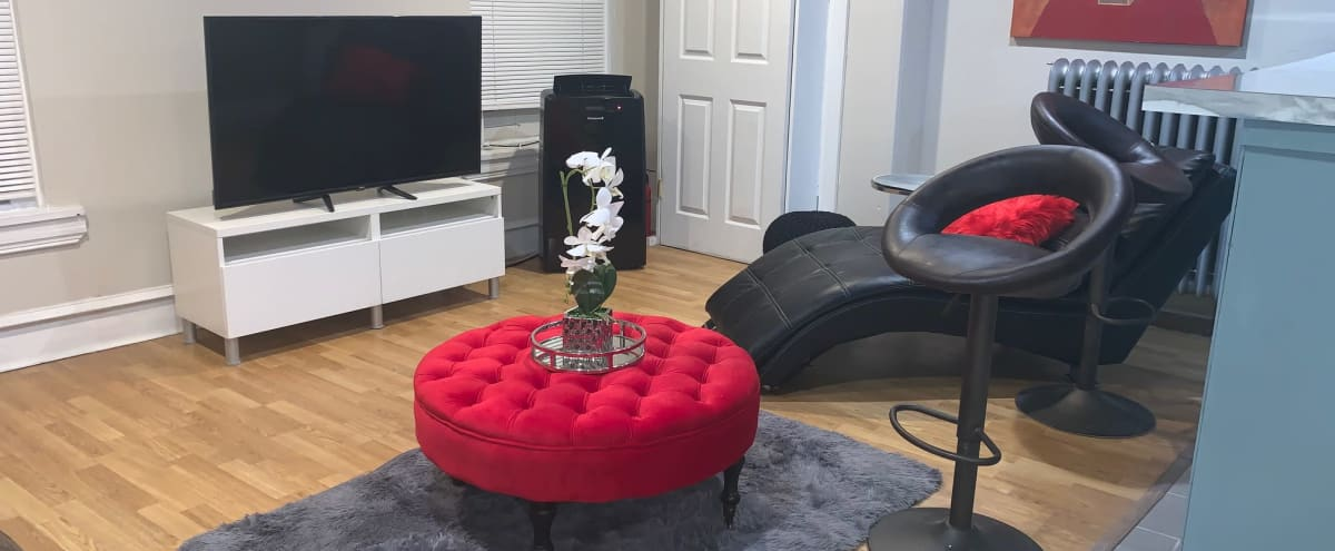 Amazing Private Second Floor Manayunk Apartment With Contemporary Modern Style in Philadelphia Hero Image in Manayunk, Philadelphia, PA