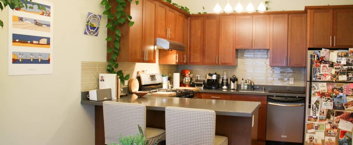 Castro Top Floor with Bright Kitchen & Counter Tops in San Francisco Hero Image in Eureka Valley, San Francisco, CA
