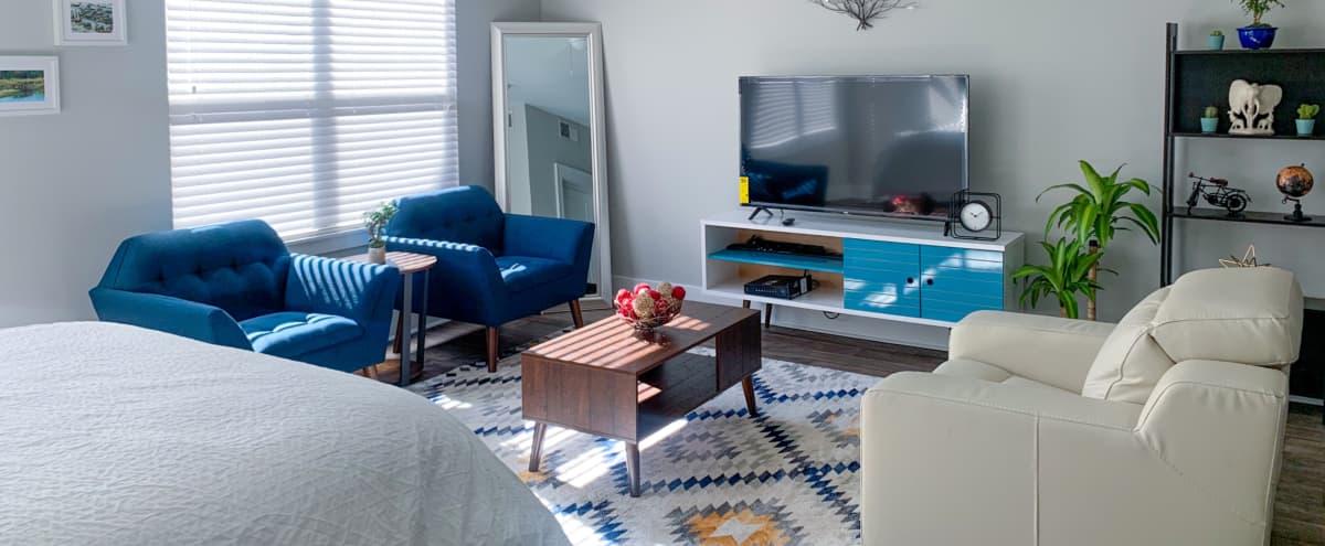 Glamorous Insta-Worthy Studio Apartment in Atlanta Hero Image in Buckhead, Atlanta, GA