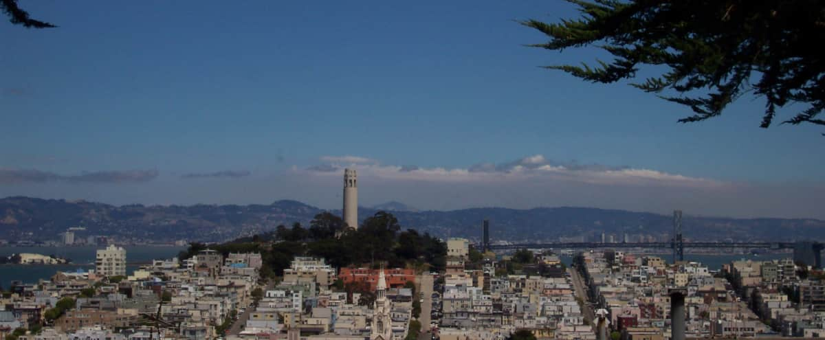 Russian Hill Condo with Expansive and Distinctive Views in San Francisco Hero Image in Russian Hill, San Francisco, CA