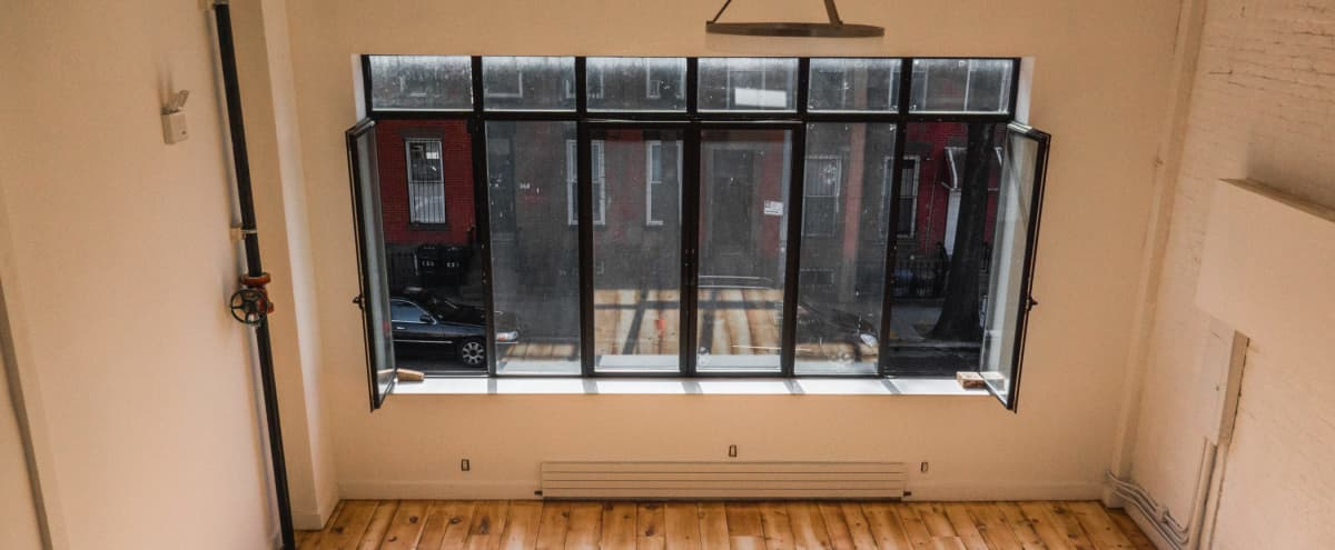 Sunny Event Space in Prospect Heights in Brooklyn Hero Image in Prospect Heights, Brooklyn, NY
