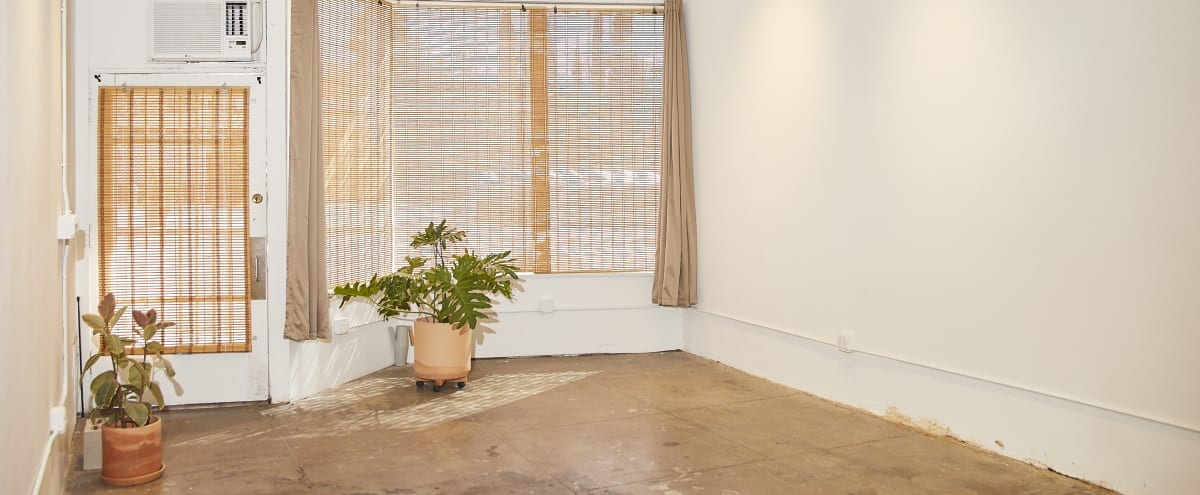 Artist Space Available for Photo Shoots, Exhibitions, and Celebratory Events in Eagle Rock Hero Image in Northeast Los Angeles, Eagle Rock, CA