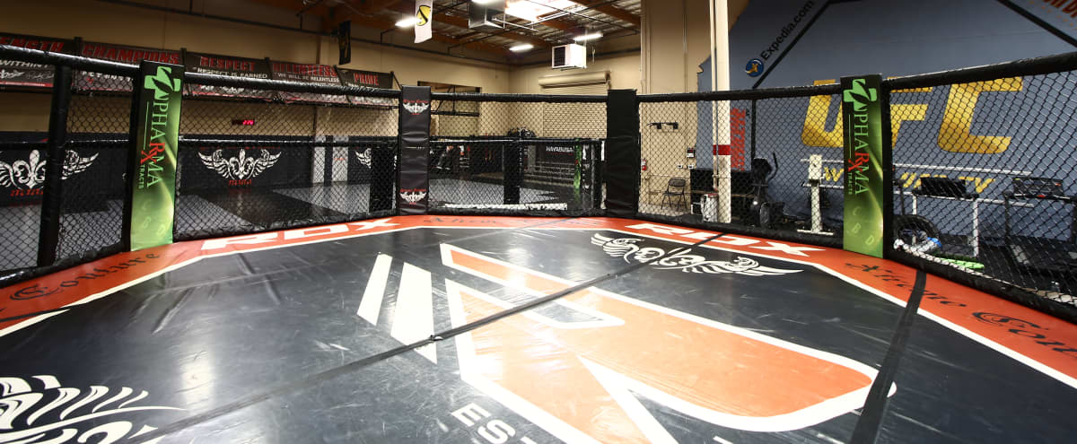 Huge Training Octagon with World Class Amenities Two Miles from the Strip in Las Vegas Hero Image in undefined, Las Vegas, NV