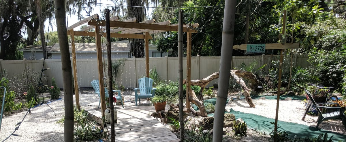 Caribbean outdoor paradise in Temple Terrace Hero Image in undefined, Temple Terrace, FL