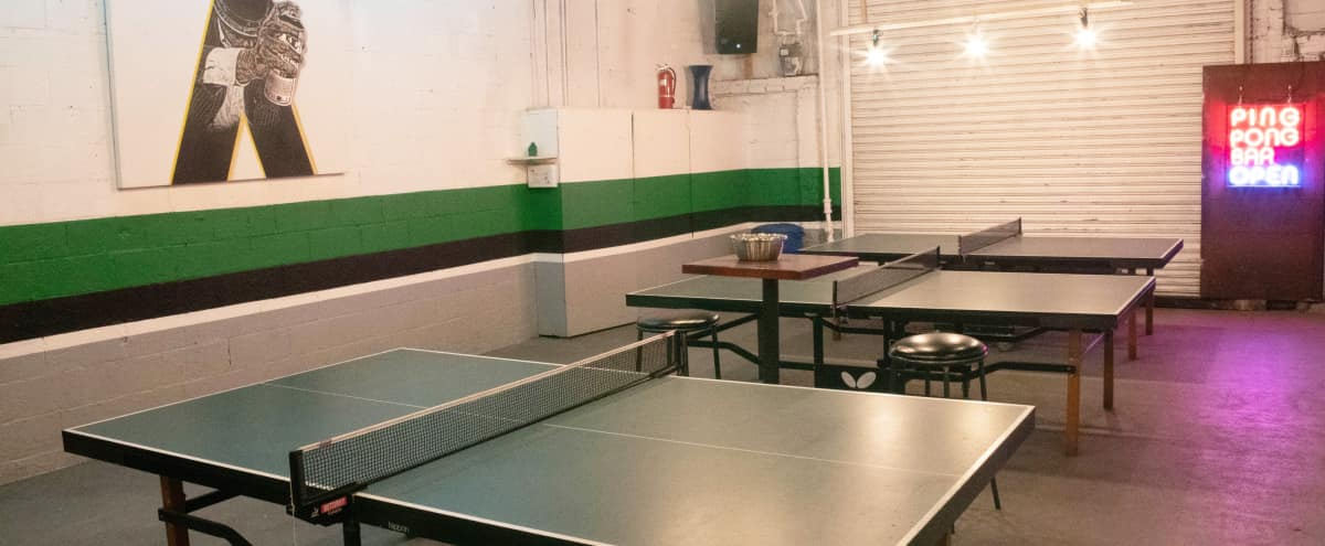 Williamsburg Ping Pong club and Studio in Brooklyn Hero Image in Williamsburg, Brooklyn, NY