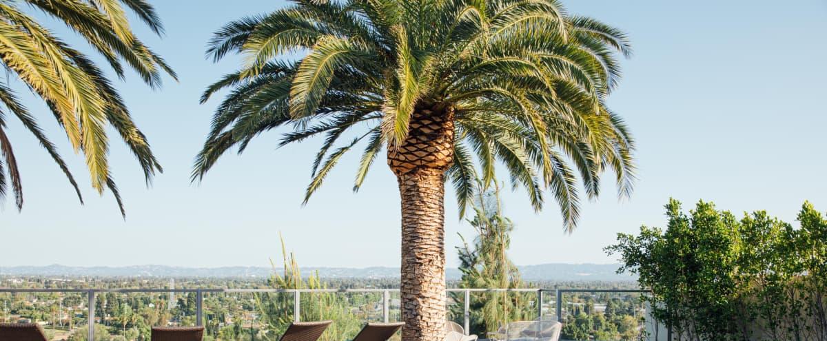 Beautiful Backyard Deck w/ Pool and 180°  View of  Granada Hills / Los Angeles in Granada hills Hero Image in Granada Hills, Granada hills, CA