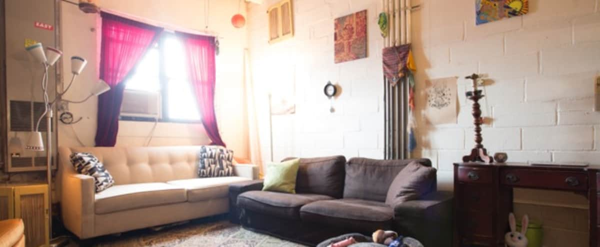 Spacious Bohemian Artist Loft in Brooklyn Hero Image in East Williamsburg, Brooklyn, NY