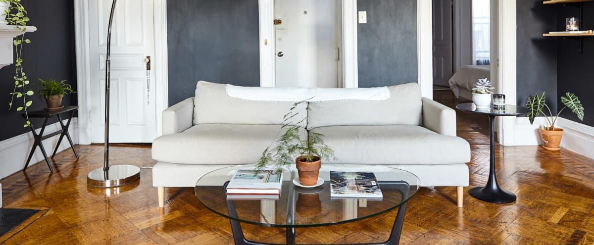 Sun-Drenched Brooklyn Apartment in Brooklyn Hero Image in Brooklyn Heights, Brooklyn, NY