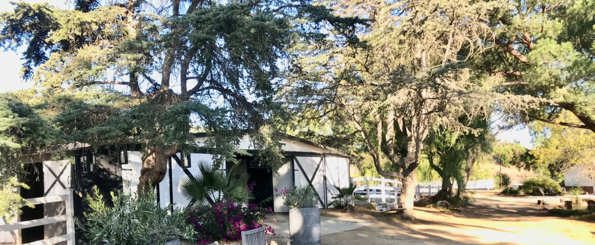 6 Acre Ranch with Barn, Industrial Barns, Roping Arena, Guest House, Pool with Cabana in Santa Rosa Valley/Camarillo Hero Image in undefined, Santa Rosa Valley/Camarillo, CA