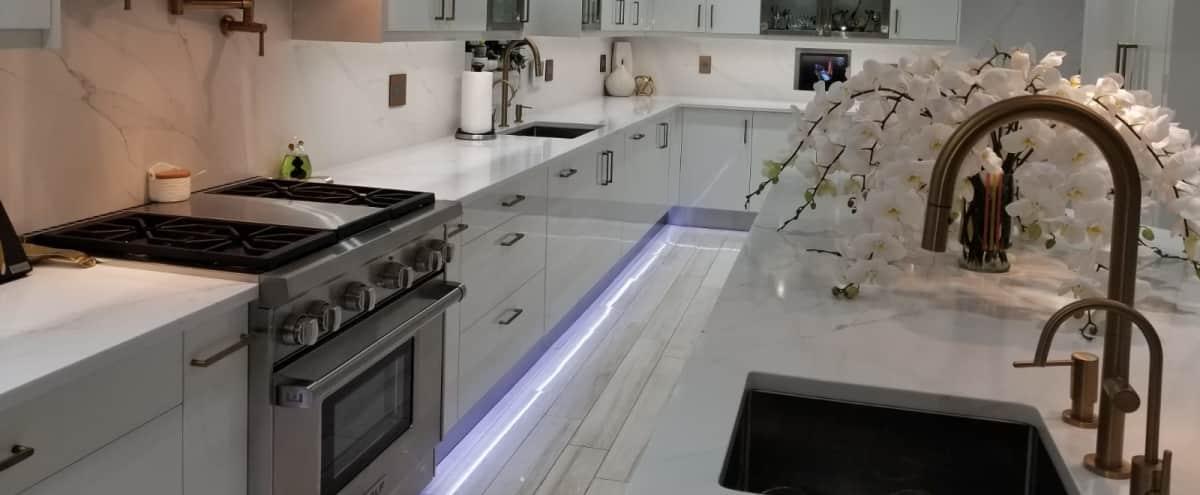 Specious luxury home in Jamaica Hero Image in Jamaica Estates, Jamaica, NY