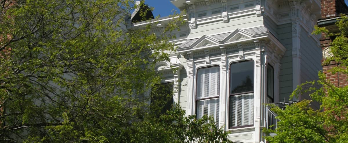 Peaceful Victorian Flat in Hayes Valley in San Francisco Hero Image in Western Addition, San Francisco, CA