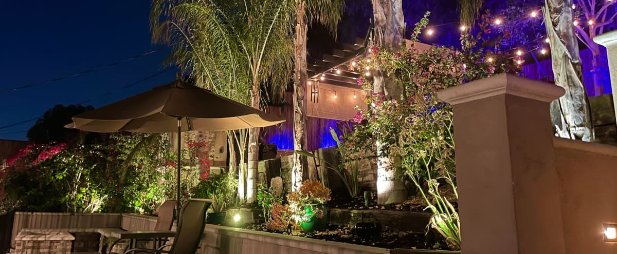 Tropical Palm Tree Zen Patio W/ Colored Lights in Contemporary Newly Furnished/remodeled Elegant Home in Woodland Hills Hero Image in Woodland Hills, Woodland Hills, CA