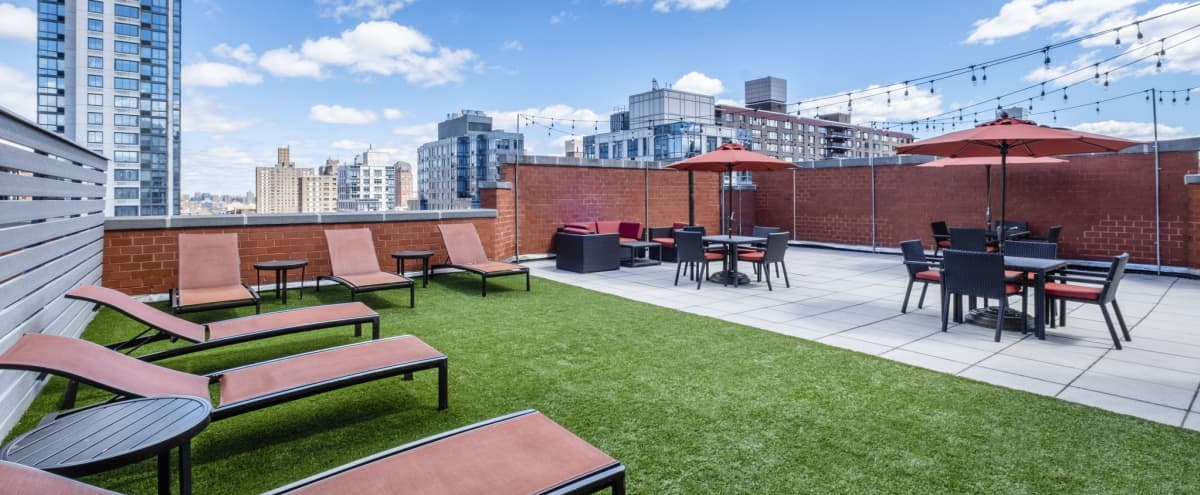 Upper West Side Roofdeck With Gorgeous