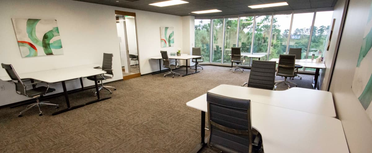 Open Room Great for Group Work & Networking in The Woodlands Hero Image in undefined, The Woodlands, TX