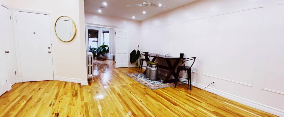 Multi-use Bi-level Brownstone Apartment in Brooklyn Hero Image in Crown Heights, Brooklyn, NY