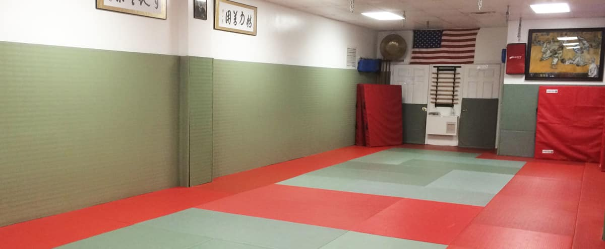 Spacious and Matted Martial Arts Studio in staten island Hero Image in Lighthouse Hill, staten island, NY
