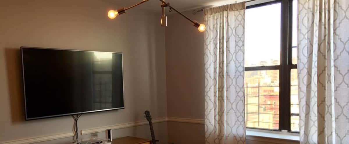Sunny, spacious, modern, 2 bd apartment in Brooklyn Hero Image in Williamsburg, Brooklyn, NY