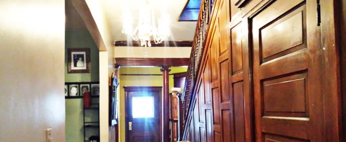 Charming Historic Graystone Mini-Mansion in Bronzeville in Chicago Hero Image in Grand Boulevard, Chicago, IL
