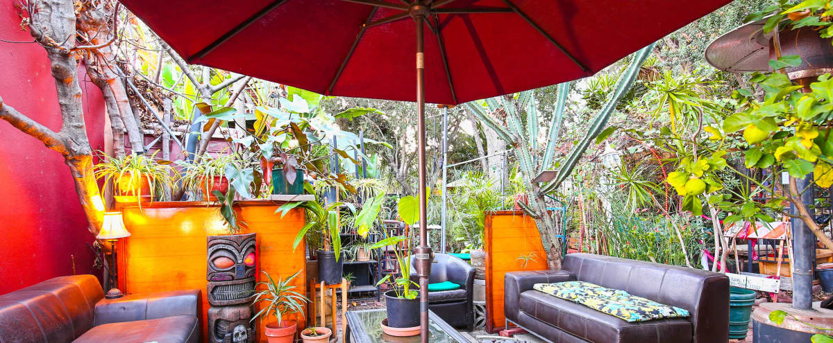 Enchanting Rainforest Offsite In The City in Los Feliz Hero Image in Los Feliz, Los Feliz, CA