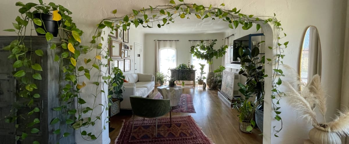 1920's Apartment with Plants, Beautiful Natural Light, Persian Rugs, Art, Frames, Antiques, Vintage and Rustic furniture in los angeles Hero Image in Jefferson Park, los angeles, CA