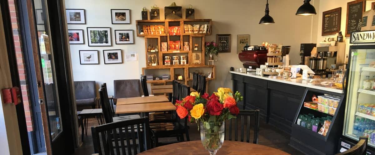 Cozy coffee shop in SEATTLE Hero Image in West Queen Anne, SEATTLE, WA