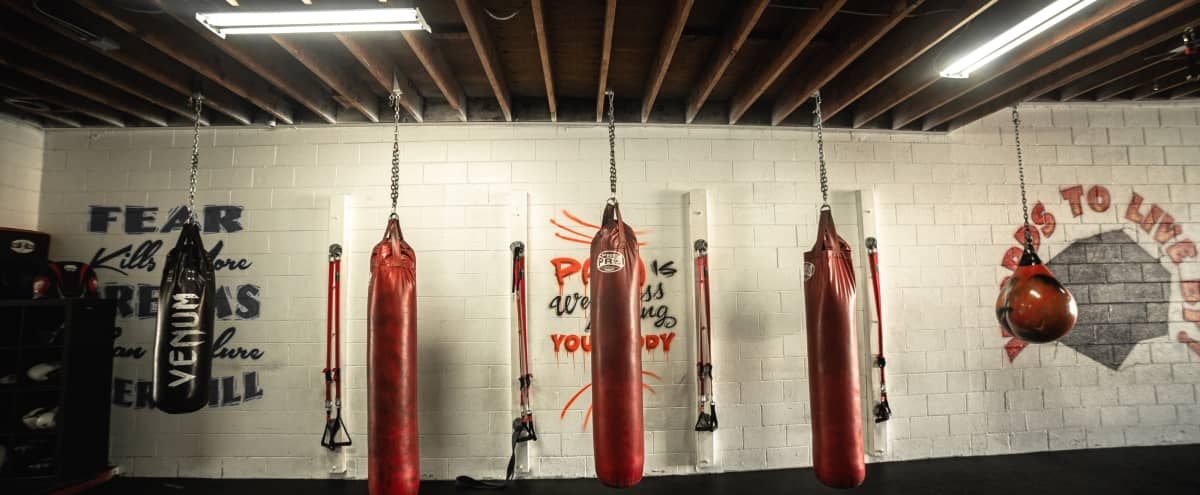 Boxing gym with style and personality, set in the heart of Manhattan Beach! in Manhattan Beach Hero Image in undefined, Manhattan Beach, CA
