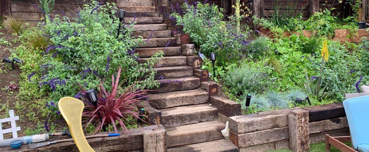 Charming backyard on hillside in Los Angeles Hero Image in Silver Lake, Los Angeles, CA