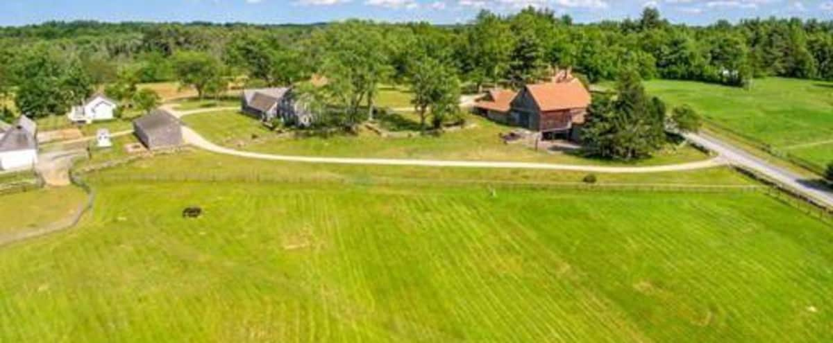 Breathtaking Historic Farm - 217 acres in MILLIS Hero Image in undefined, MILLIS, MA