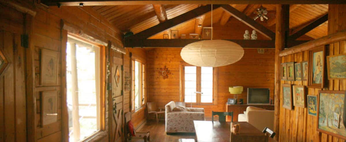 Rustic Wooded Artist Cabin from the 1950s: Location Scout's Dream in Michigan City Hero Image in undefined, Michigan City, IN