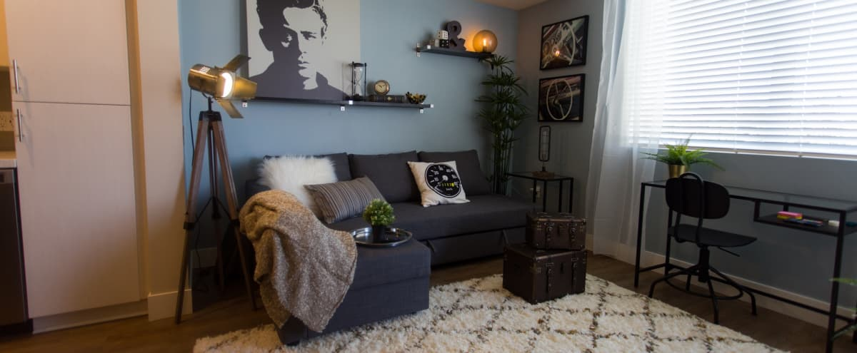 Sun Kissed Modern Apartment in the Heart of Downtown Fullerton | Professionally Clean in Fullerton Hero Image in null, Fullerton, CA