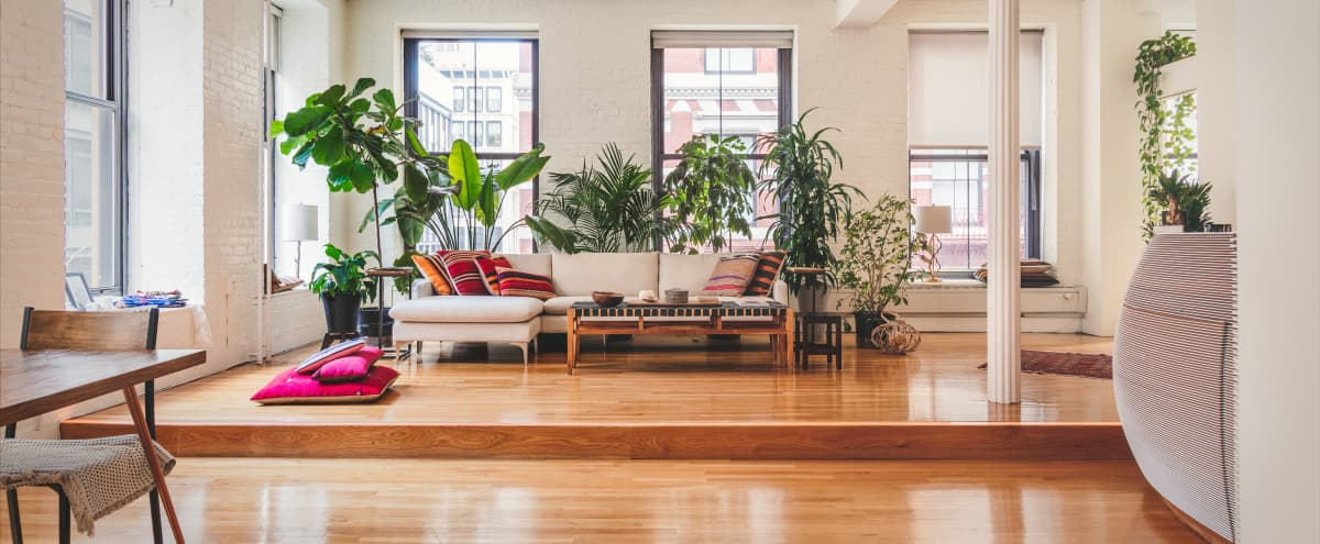 Conscious Designed Soho Apartment with lots of natural light and plants in New York City Hero Image in SoHo, New York City, NY