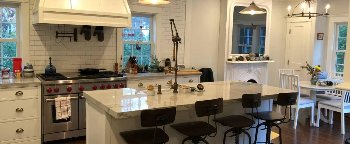 Suburban Luxury Home in Pelham Hero Image in undefined, Pelham, NY