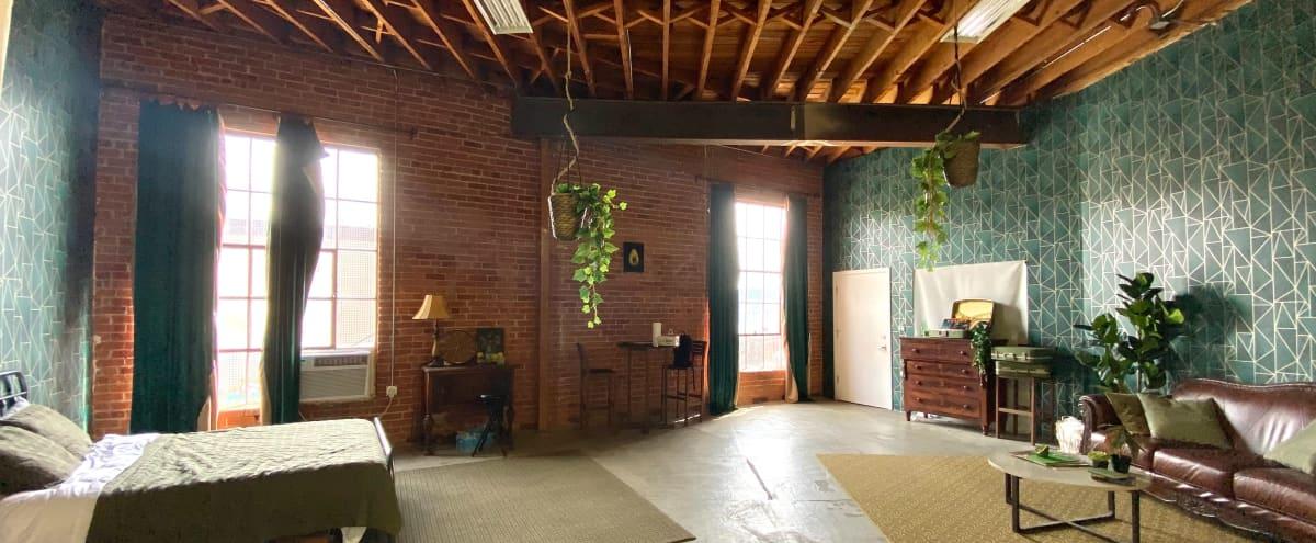 Urban Green Photo / Film Studio in DTLA  - Avocado Loft in Los Angeles Hero Image in South Los Angeles, Los Angeles, CA