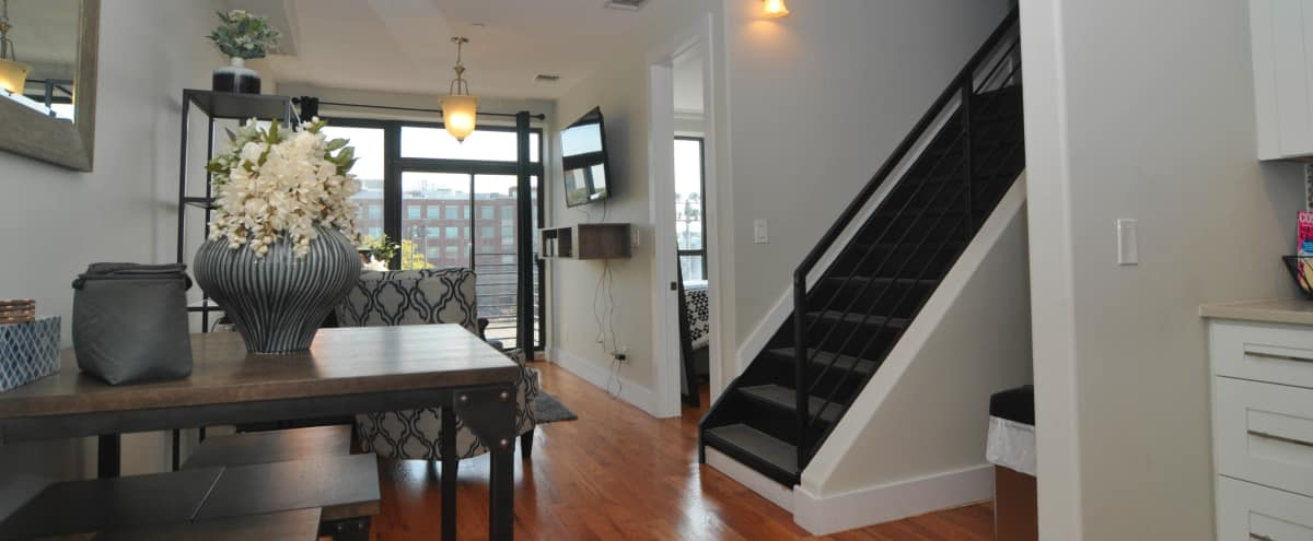 Luxury 2 Bedroom Apartment in Bedstuy - Tons of Natural Light in Brooklyn Hero Image in Bedford-Stuyvesant, Brooklyn, NY
