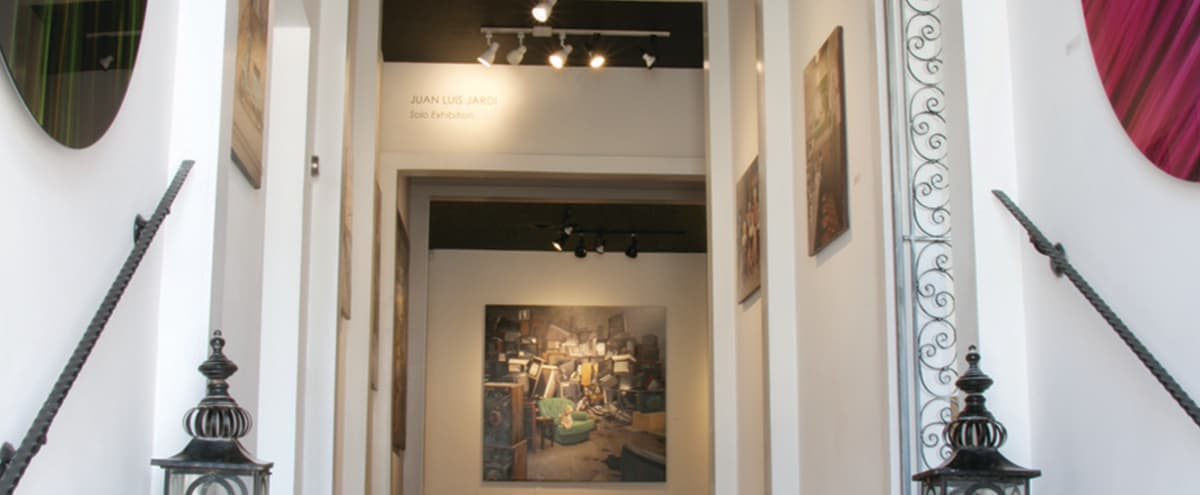 Beautiful Art Gallery Located in The Design District in Dallas Hero Image in Design District, Dallas, TX