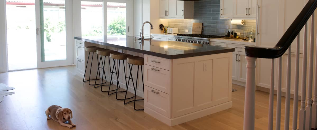 Modern, newly renovated 4 bedroom home with pool and spacious rooms. in Kentfield Hero Image in undefined, Kentfield, CA