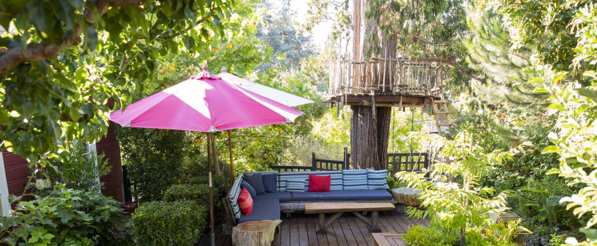 Oakland Garden House in oakland Hero Image in Upper Dimond, oakland, CA