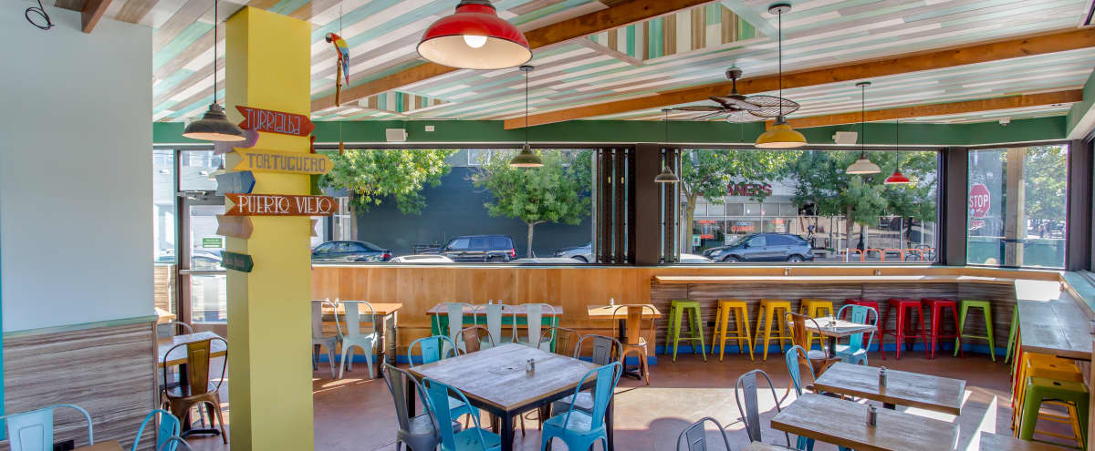 Amazing Year-Round BYOB Patio in Bucktown in Chicago Hero Image in Bucktown, Chicago, IL