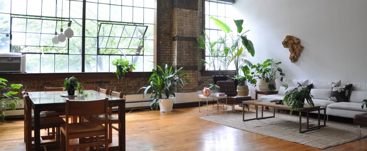 Industrial Brooklyn Loft with Tree-Lined Windows for Small Film & Photo Shoots in Brooklyn Hero Image in Clinton Hill, Brooklyn, NY