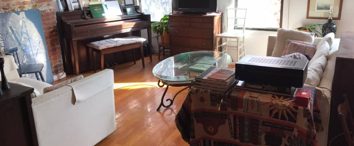 Spacious Brooklyn Apartment for Interior Shoots / Interviews! in Brooklyn Hero Image in South Slope, Brooklyn, NY