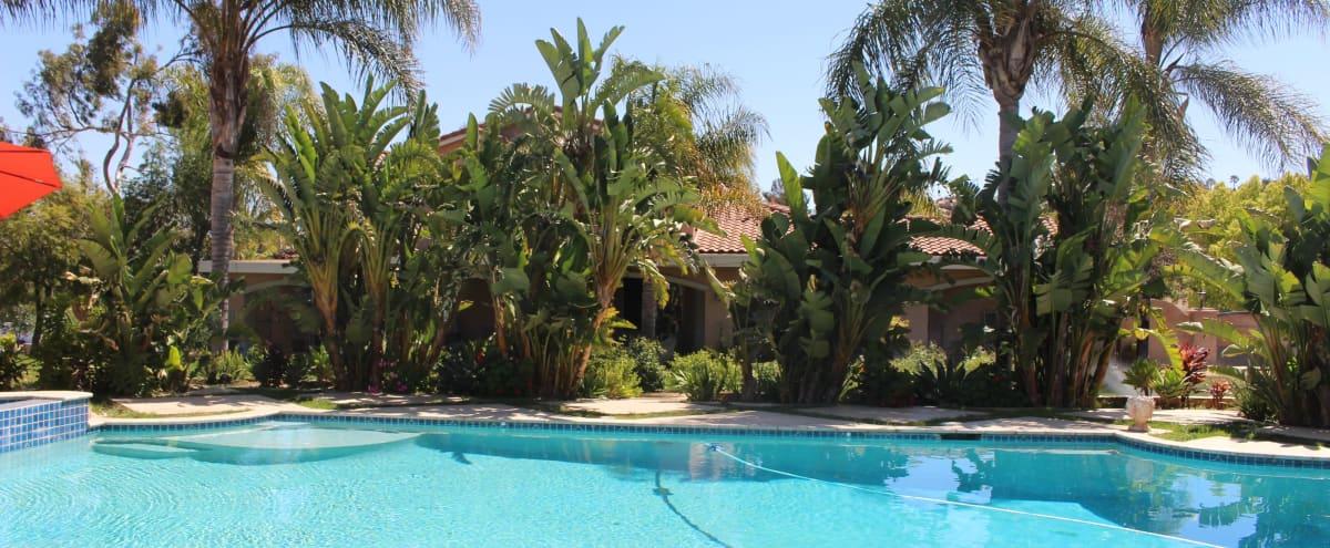 Tropical Oasis Backyard in RIVERSIDE Hero Image in undefined, RIVERSIDE, CA