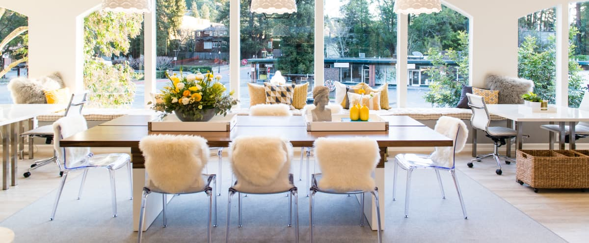 Beautiful Light and Art Filled Workspace in Downtown Mill Valley in Mill Valley Hero Image in undefined, Mill Valley, CA