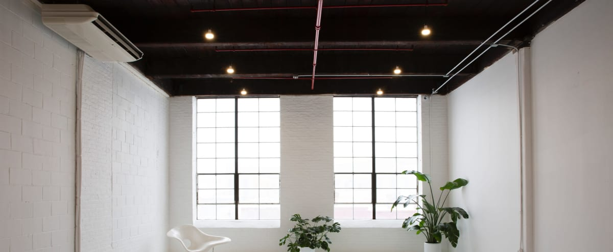 Daylight Photo Studio with Large Windows Designer Furniture in Brooklyn Hero Image in Red Hook, Brooklyn, NY