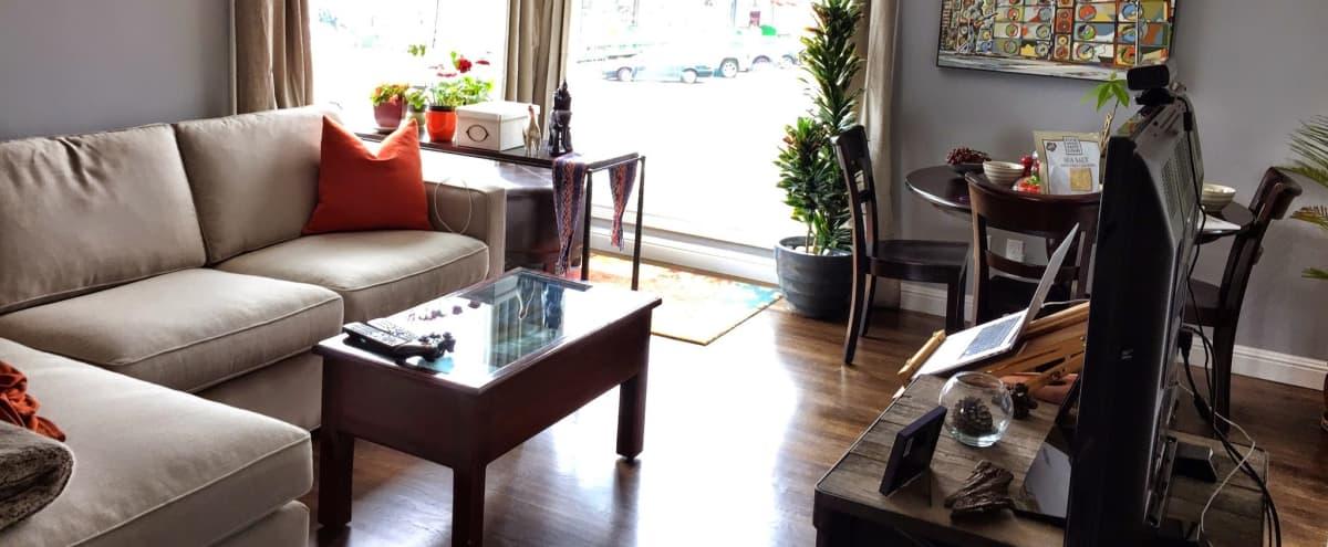 Urban meet cozy pad in San Francisco Hero Image in Parkside, San Francisco, CA