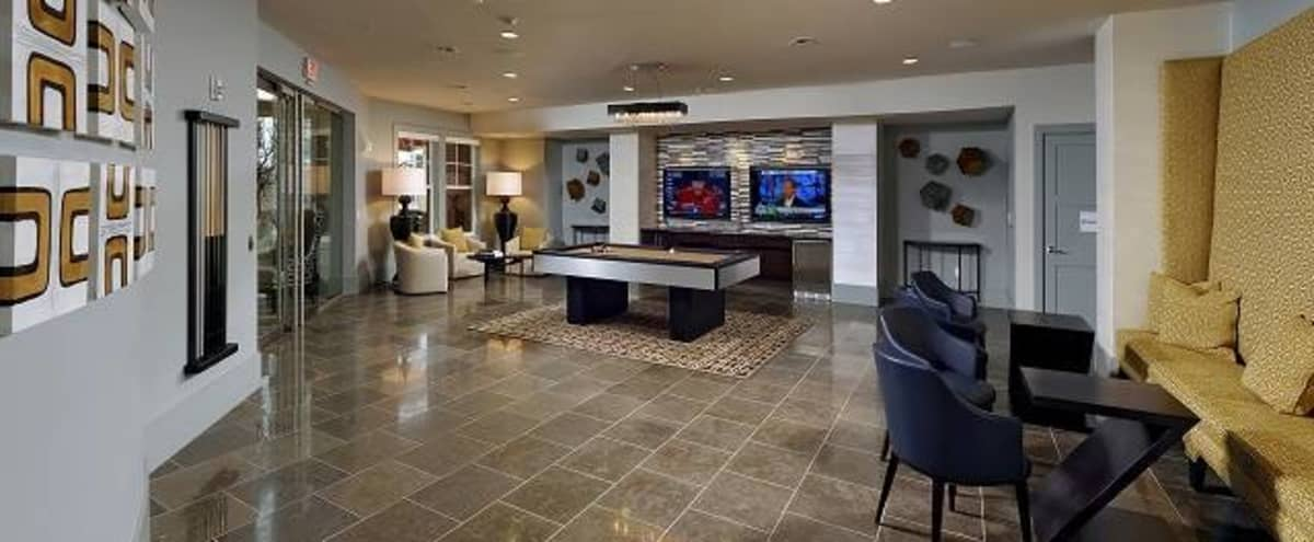 Perfect Game Room Space for Your Small Event, Meeting or Sports Viewing!!! in Arlington Hero Image in Waverly Hills, Arlington, VA