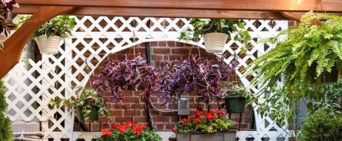 Restaurant with Beautiful Patio in New York Hero Image in Upper East Side, New York, NY
